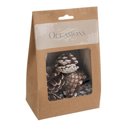 Groves Pine Cones: White Tipped: 9 Pieces