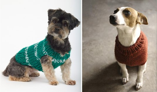 Top 5 free dog sweater knitting patterns blog