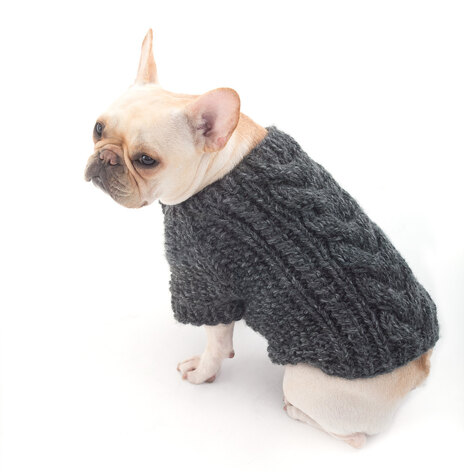 Top 5 Free Dog Sweater Knitting Patterns Loveknitting