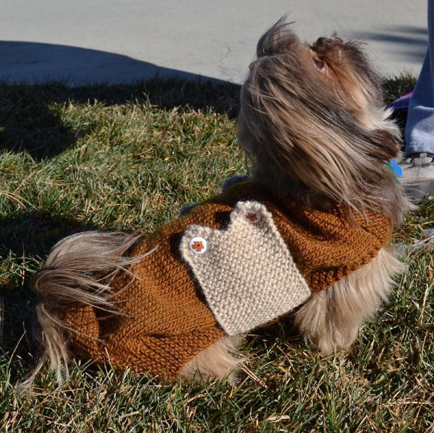 Battersea Dogs Home Knitting Pattern Dog Coat : Dog Bone Sweater Knitting pattern by colette smith Knitting Patterns Love...