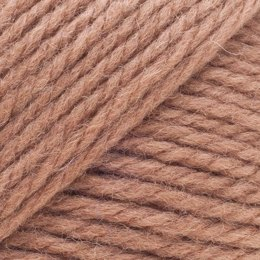 Brown Sheep Nature Spun Worsted