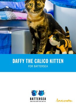 Daffy the Cat for Battersea