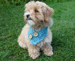 Dog Buttoned Cowl