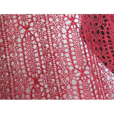 Perpetua Lace Wrap and Scarf