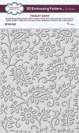 """Creative Expressions 3D Embossing Folder 5.75""""X7.5"""" - Paisly Daisy"""