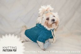 Sport hoodie clothes for dog