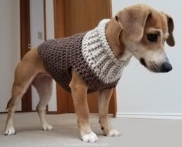 Earhart Dog Sweater UK TERMS 1214