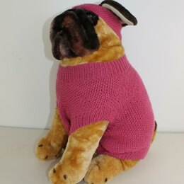 Dog Moss Stitch Coat and Headband