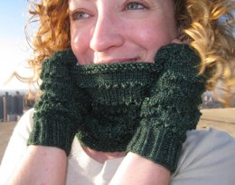 Erinn Fingerless Mitts & Cowl Set
