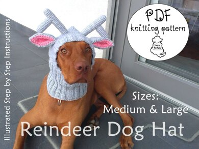 Reindeer dog hat - sizes M and L Knitting Crochet pattern by majStyle 7fc6dcf7c43