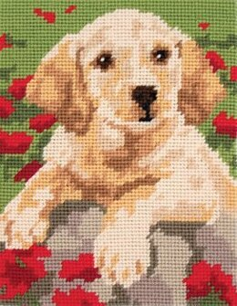 Anchor Labrador Puppy Tapestry Kit