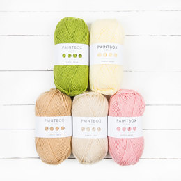 Paintbox Yarns Simply Aran 5 Ball Colour Pack Designer Picks