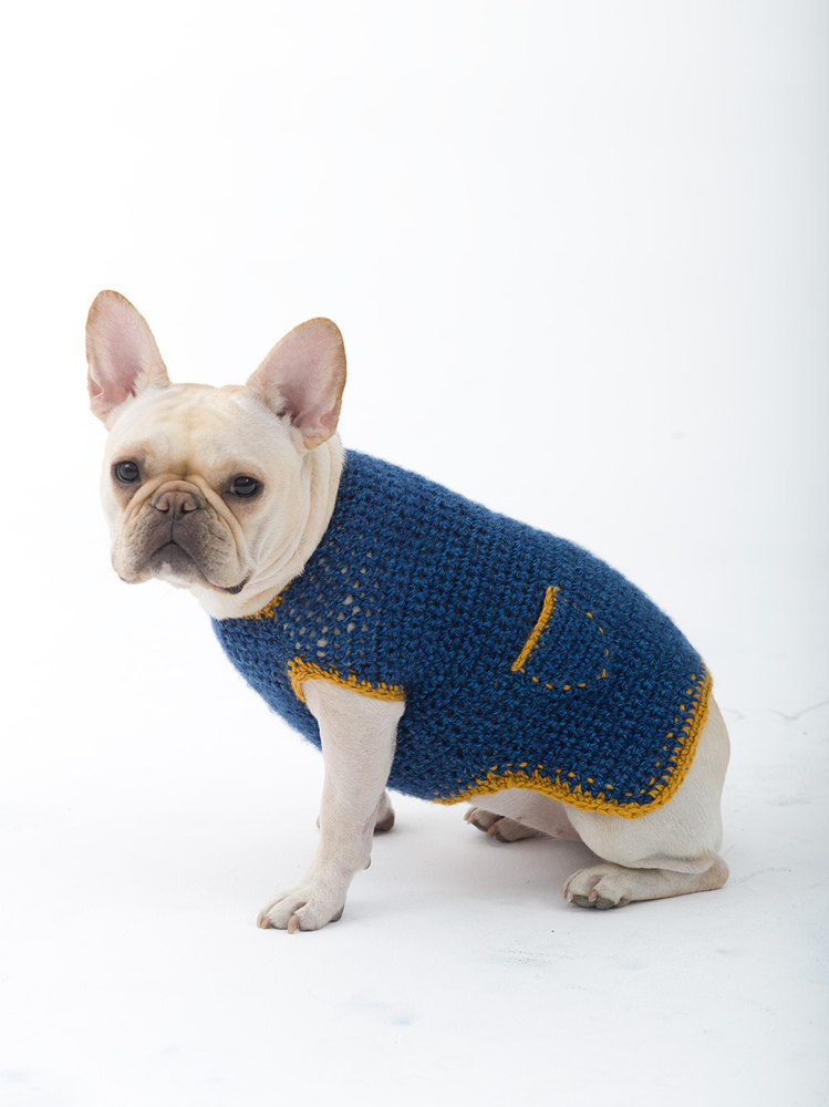 Casual Friday Dog Sweater In Lion Brand Heartland L32352