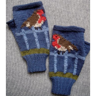 Robin on a Fence fingerless gloves/mitts