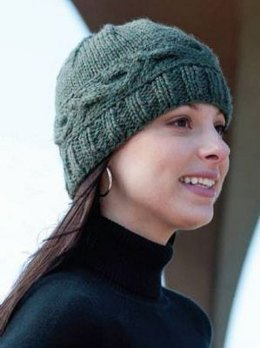 e5270b16214 Cabled Band Hat in Cascade 128 Superwash - C192