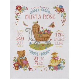 Bucilla Counted Cross Stitch Kit 10.5in x 13.5in - Sweet Baby Birth Record (14 Count)