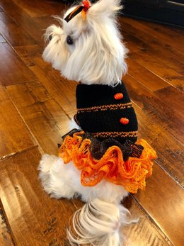 Witchy Wags Dog Dress