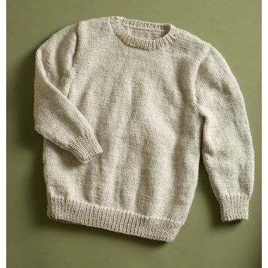 Sleeve Classic Pullover in Lion Brand Wool-Ease - 90041AD