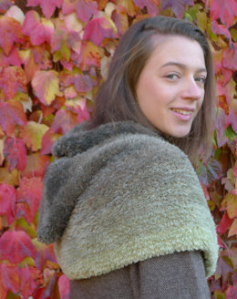 Hooded Cowl in Wendy Evolution Box Scarf - Downloadable PDF