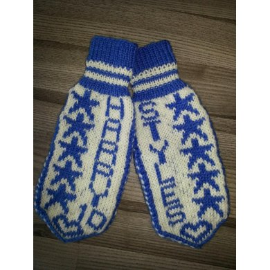 One Direction/Harry Styles Mittens