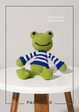 Zachary the Frog in Paintbox Yarns Simply DK - 011 - Downloadable PDF