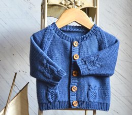 Round neck raglan sleeve cardi with cabled owls - P079
