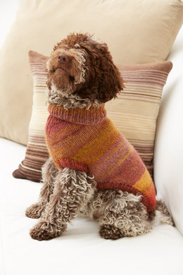 Proud Puppy Dog Sweater in Lion Brand Amazing - L32076
