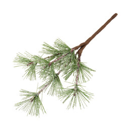 Groves Leaves: Frosted Spruce: 15cm: 12 x 1 Branch