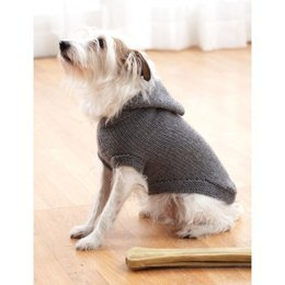 Hoodie Dog Coat in Bernat Super Value