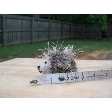Small and Mini Hedgehogs