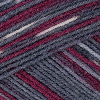 Regia 4 Ply Color 100g