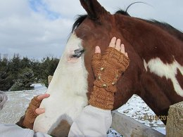 Horse Lover's Mitts