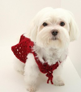 P04 Dog Sweater Circle Shrug