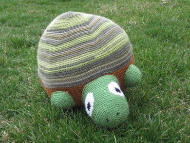 Timmy the Timid Turtle