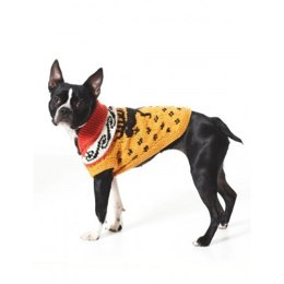 Cowichan Style Dog Coat in Bernat Super Value