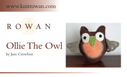 Ollie The Owl in Rowan Handknit Cotton