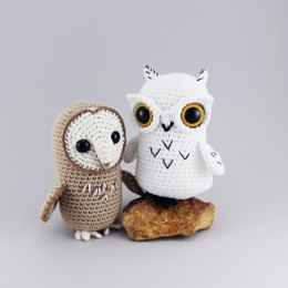 Feathered Owl Friends