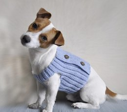 Blue Dream Dog Sweater