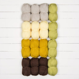 Stylecraft Cosmic CAL - Harmony 16 Ball Colour Pack