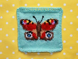 Peacock Butterfly Intarsia Square