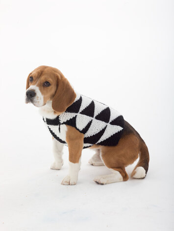 Modernist Dog Sweater in Lion Brand Vanna's Choice - L32308