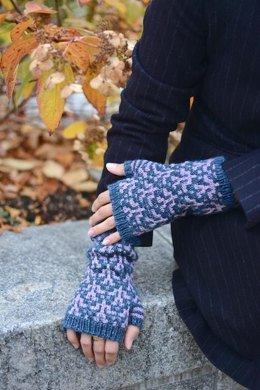 NYBG Mitts