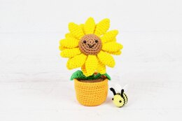 Potted Sunflower