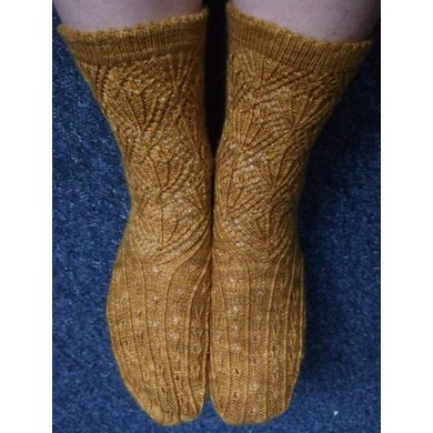 Fields of Gold socks