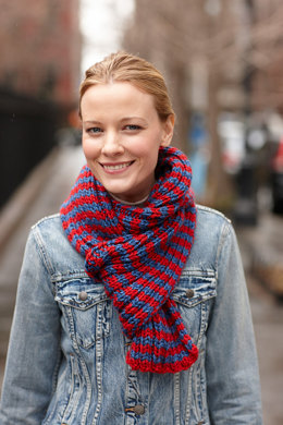 Patriot Scarf in Lion Brand Heartland - L30119