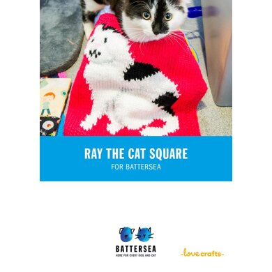 Ray Blanket for Battersea
