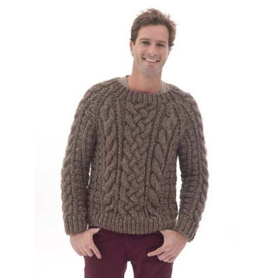 Raglan Cabled Pulloverin Lion Brand Wool-Ease Thick & Quick - L40174