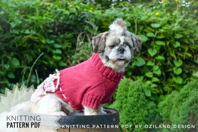 Lace cherry dress for dog