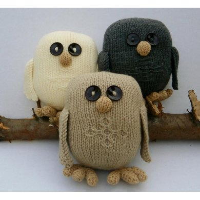A Trio of Owls