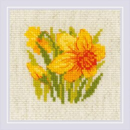 Riolis Yellow Narcissus Cross Stitch Kit - 13cm x 13cm